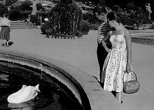Pinnochio Gardens